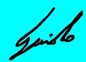Guido Perino - Firma